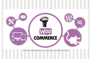 10 Reasons why WooCommerce is the best for eCommerce business