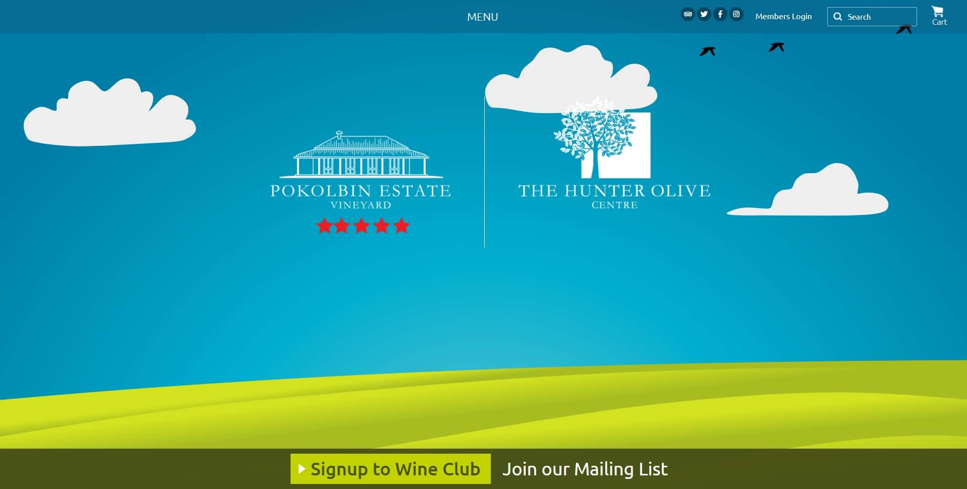 Pokolbin Estate Vineyard Website Design & SEO Northern Rivers NSW - JezNorthWeb