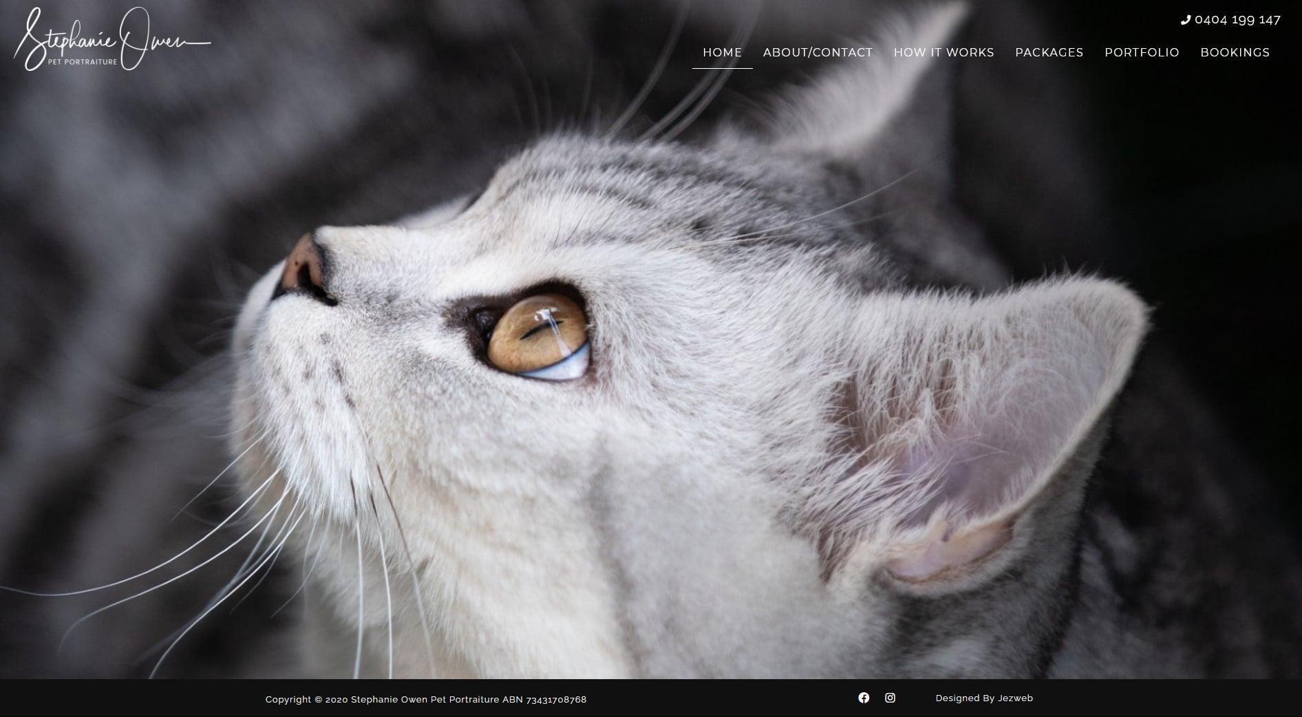 Stephanie Owen Pet Portraiture -